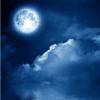 月冷为魂舞