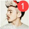 Viking L