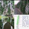 绿源生态科技